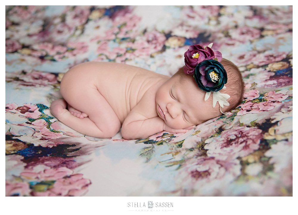 best-newborn-photographer-cape
